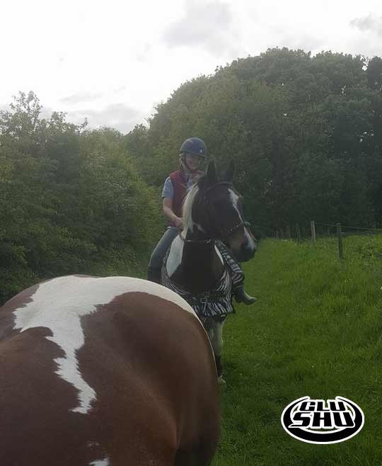 Mally glushu glue on horse shoes review