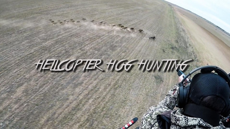 Helicopter Hog Hunting