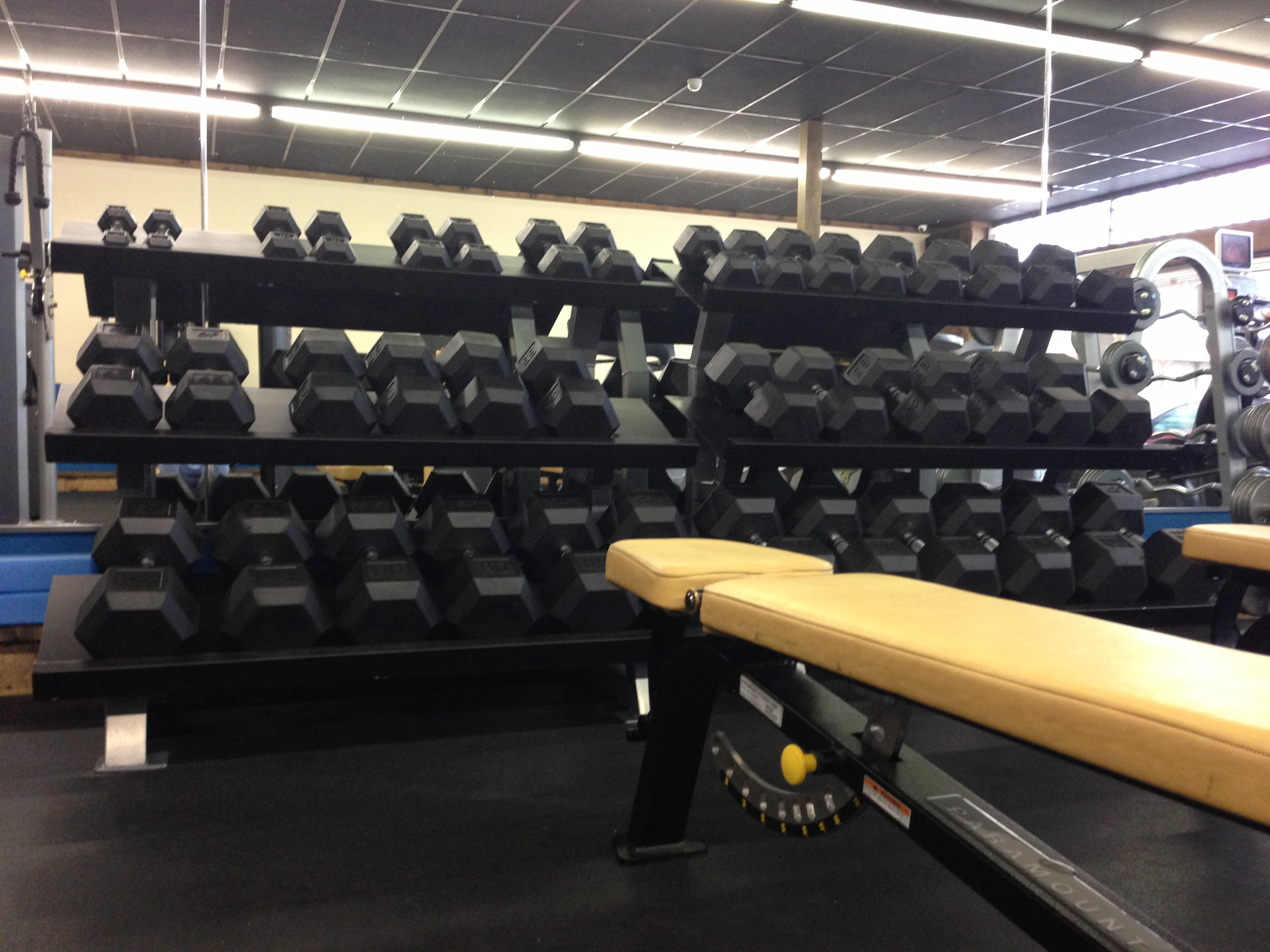 Dumbbell Area