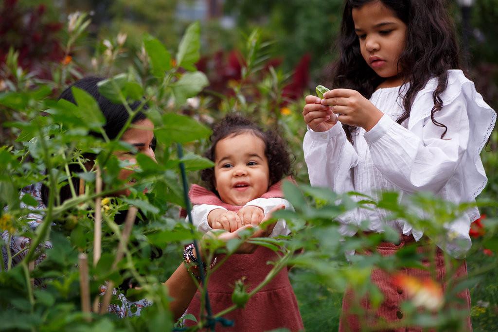 garden ami.JPG