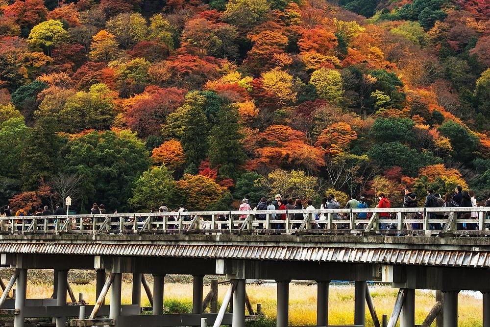 Togetsukyo Bridge - Walking Tour Kyoto