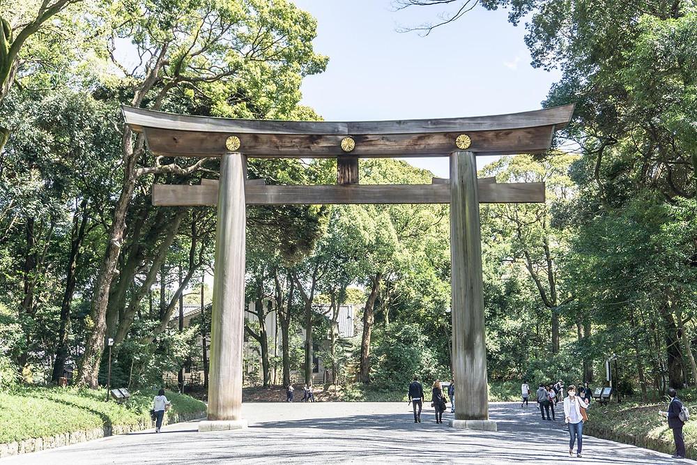 Traveller Tour Tokyo