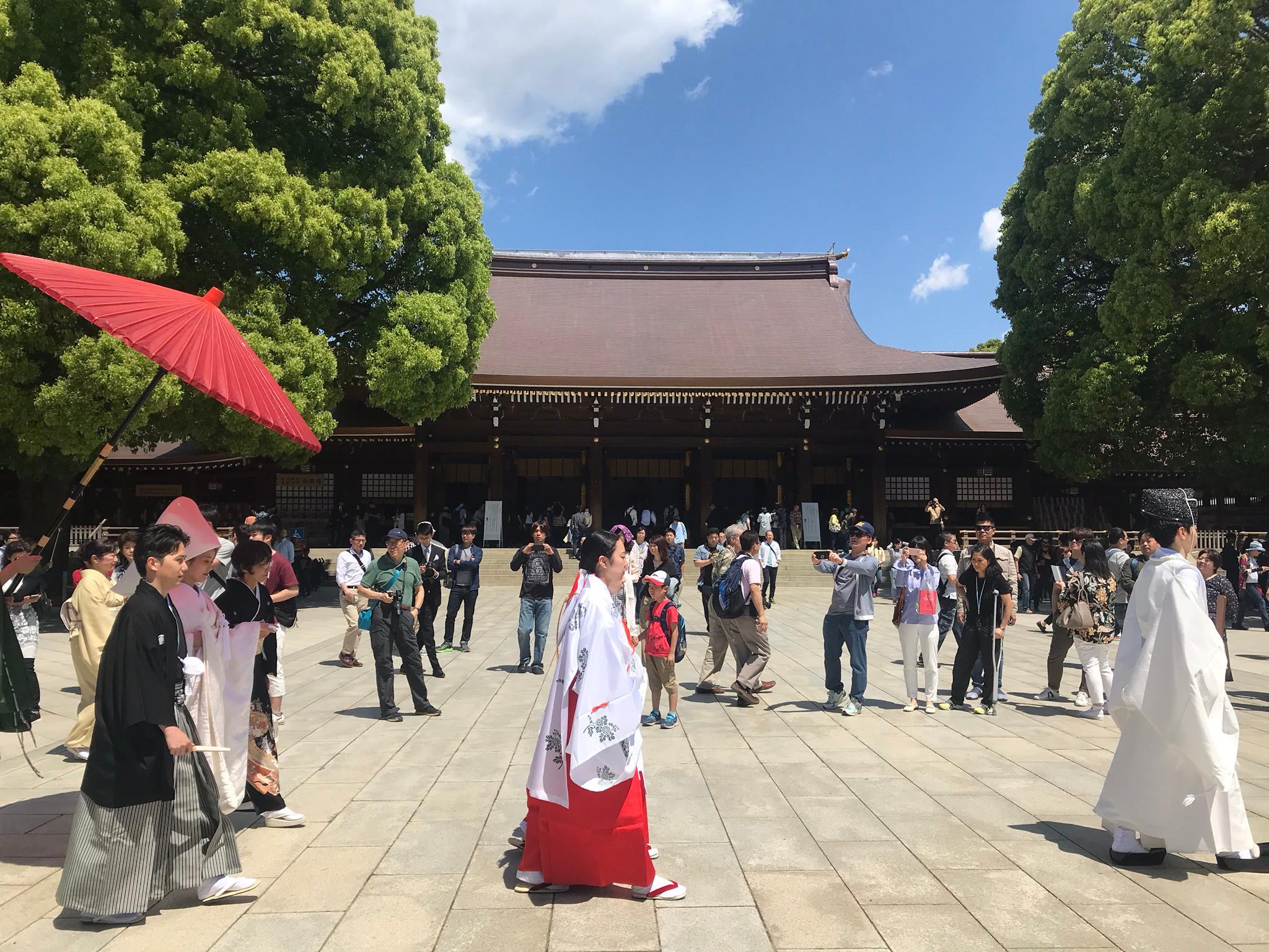 Meiji Jingu & Harajuku Free Walking Tour