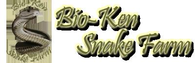 Bio Ken.png
