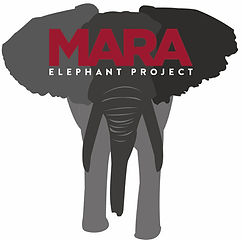 Mara Elephant Project.jpeg