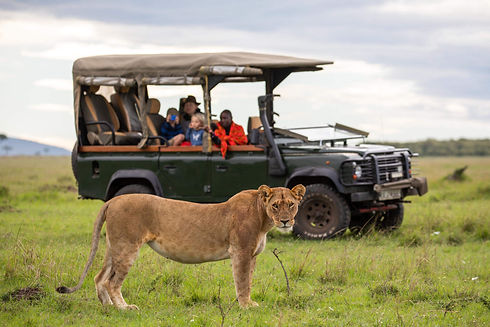 Exclusive use safari car.jpg