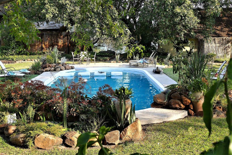 Swimming Pool at Waterberry Lodge.jpg