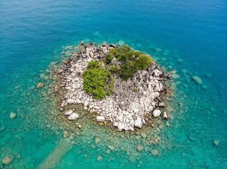 honeymoon_island_-__david_digregorio.jpg