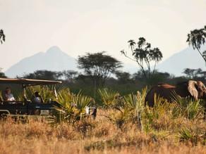 Kenya's Wet and Dry Seasons