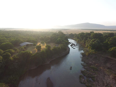 Perched on the edge of the Mara River.jp