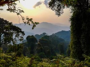 Rwanda's wet and dry season