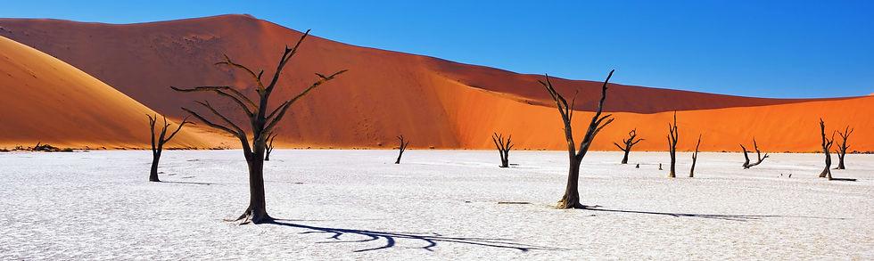 Namibia_edited.jpg