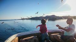 Lake Nasser00010