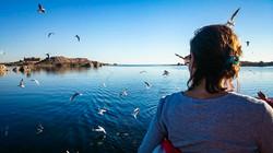 Lake Nasser00009