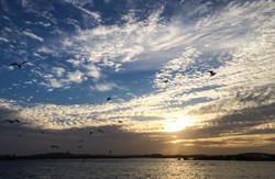 Lake Nasser00006