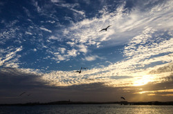 Lake Nasser00007
