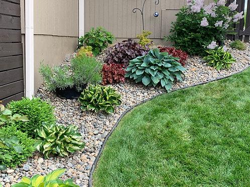 Garden Beginner's Workshop; Top 10 Steps to Improve your Garden Now