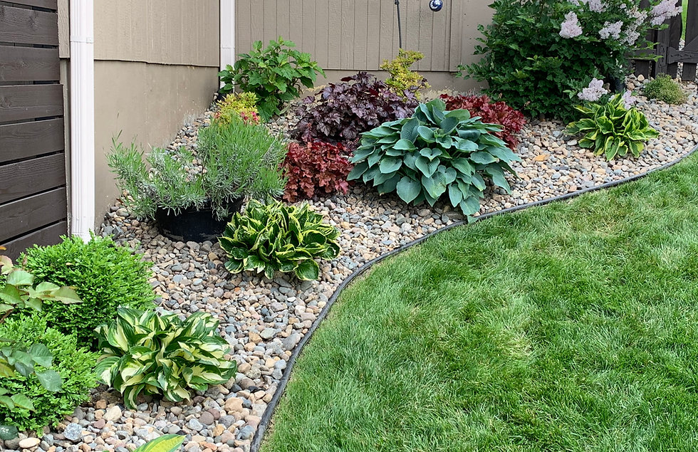 Mini Landscape Consultation & Plan