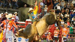 Peão de Inhumas Goiás é campeão do 27º Rodeio Internacional de Barretos