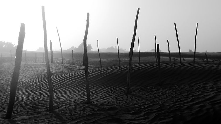 Maroc_désert_6.jpg