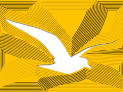 A liberdade de pensar e de voar!