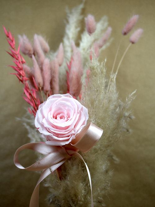 """Strauss """"Pink dream"""""""