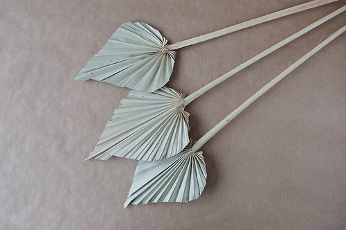 Palmspear