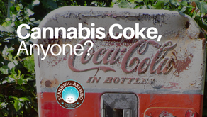 Coca Cola Cannabis Drinks?