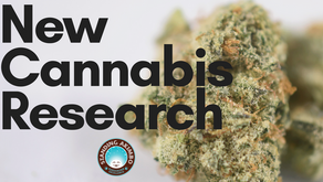 The Latest in Cannabis Research: Summer 2018