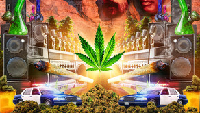 Top 5 Cannabis Documentaries to Add to Your Watch List