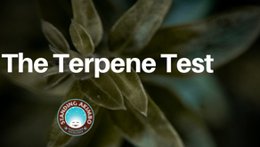Cannabis Producers Dive Into Terpenes