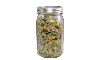 Cannabis Curing in Jars