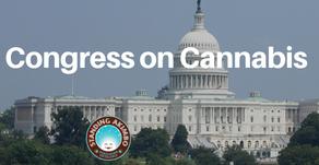 Election Results Affect Nationwide Cannabis Legislation