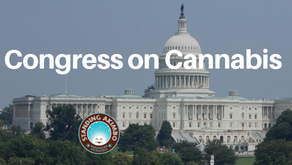 Election Results Affect Nationwide Cannabis Legislation