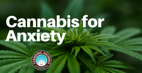 Certain Cannabinoids and Medical Cannabis Could Be Beneficial for Anxiety According to Research