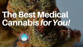 Finding The Perfect Denver Medical Marijuana Dispensary, Treatment Options, and Cannabis Strains Nea