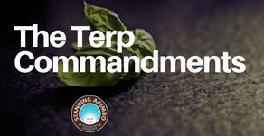 The Terp Commandments