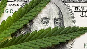 Colorado to Vote on Increasing Cannabis Taxes in November