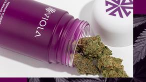 Viola Brands expands with Allen Iverson