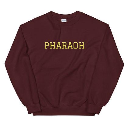 University Style Unisex Sweatshirt