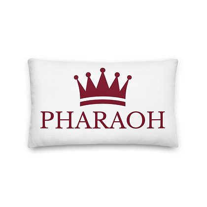 Reversible and Patterned Premium Pillow