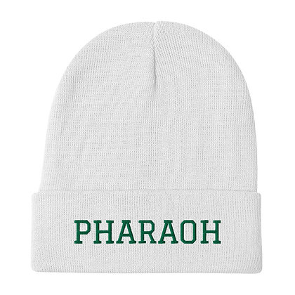 Green Insignia Embroidered Holiday Beanie