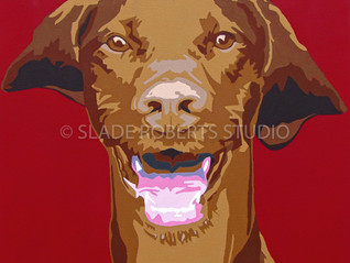 New Work: Vizsla