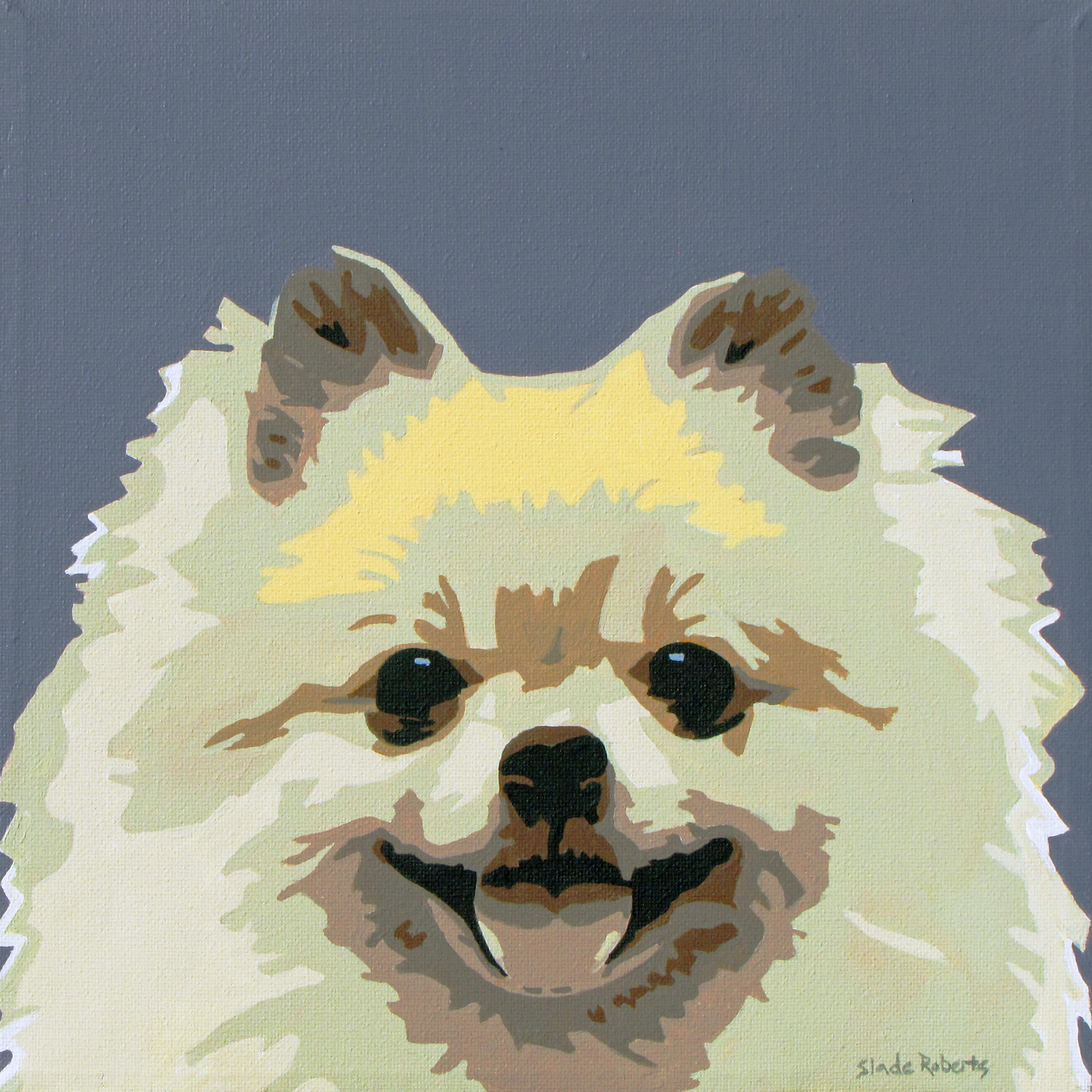 Pomeranian - SladeRobertsStudio