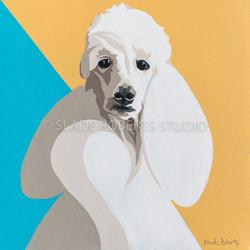 Poodle - Slade Roberts Studio 2016