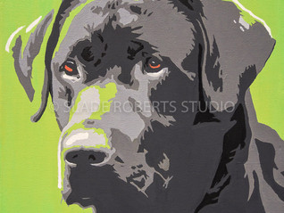 New Work: Black Labrador