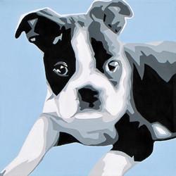 Boston Terrier - Slade Roberts Studio