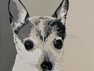 New Work: Toy Fox Terrier