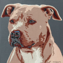 Red Nose Pit Bull - Slade Roberts Studio 2014