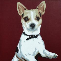 Chihuahua - 2 - Slade Roberts Studio 2013